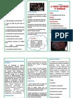 TRIPTICO DE LA HELICOCIENCIA DEL 2018.docx