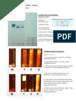 Gyakorlati jegyzet.pdf