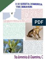 Vangelo in immagini III Domenica Quaresima C.pdf