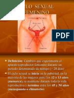 Ciclo Sexual Femenino 1221175409619246 9 Ppt Share)