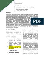 Informe N3.docx