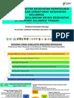 Rencana Kegiatan Subklaster Kespro Masa Pemulihan Dan Rekonstruksi Update 13 Nov 2018