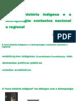 1--A NOVA HISTÓRIA INDÍGENA E A ANTROPOLOGIA.pptx