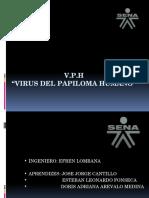 EXPOCISICON VPH.pptx