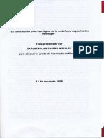 Castro Morales Carlos Constitucion