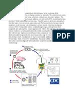 draft neurocysticercosis.docx
