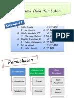 Metabolisme pada Tumbuhan