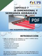 CAPÍTULO 7 - Análisis Dimensional y Semejanza Hidráulica