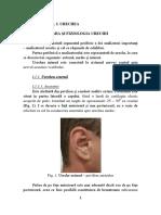 Curs_Asist_2_Final_BT.pdf