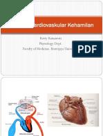Perubahan Sistem Kardiovaskuler Selama Kehamilan