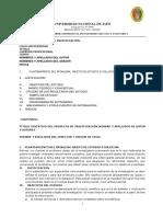 esquema de informe de investigacion