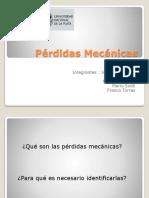Presentacion Perdidas Mecanicas COMPLETA