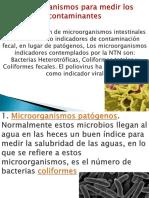 Diapositiva de Biología
