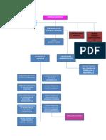 ORGANIGRAMA IECM (1)