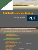 Subfilum Veretebrata= Craniata