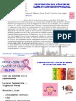 Prevención del cáncer de mama en atención primaria.