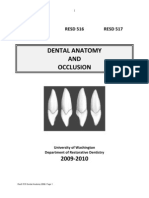 Dental Anatomy Manual