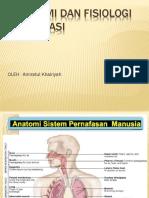 anatomi dan fisiologi respi