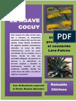 EL AGAVE COCUY.docx
