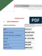 Ficha Osinfor 2019