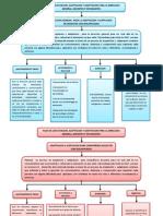 MAPA PLAN DE CAPACITACION, ACEPTACION Y ADAPTACION.-sena.pdf