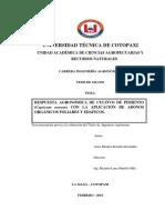 T-UTC-00825.pdf