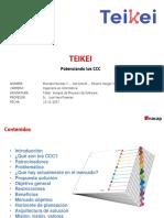 Presentación P003_Teikeif