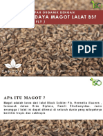 MAGOT_SLH
