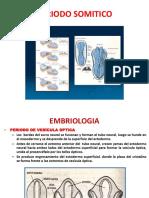 1.-Embriologia y Anatomia Dr.cortez.