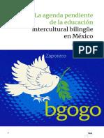 06Eje INEE Educacion Indigena