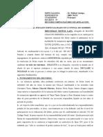 APELACIÓN DE SENTENCIA EN DELITO DE USURPACIÓN