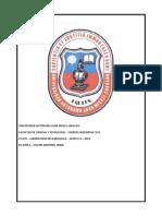 CIV321G1383352AYAVIRI1.docx