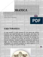 CAJA TORAXICA.pptx