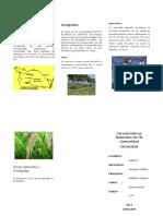 Características-Naturales-De-Mi-Comunidad.docx