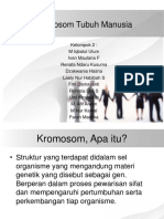 16438_40204_presentasi Lab Bio Kromosom