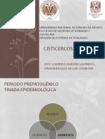 Cisticercosis_porcina.pdf