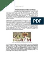 proveedores-comercializacion.docx
