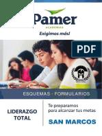 PAMER PERU.pdf