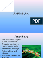 Respiration in Amphibians