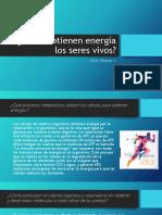 Act2-Cómo Obtienen Energía Los Seres Vivos