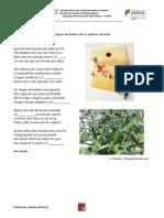 Ficha carta A.docx