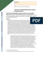 OP Hydrolysis Bacteria