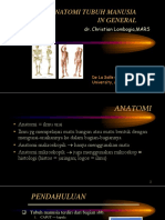 Anatomi UMUM Manusia dr.ppt