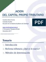 4-CapPropioTrib-CSilva.pdf