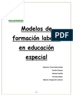 Modelos de formación laboral en educación especial