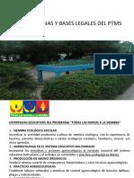 ESTRATEGIAS Y BASES LEGALES PTMS.