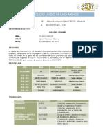 01 PROYECTO.docx