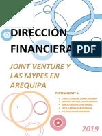 JOINT-VENTURE-PRESENTACION-AVANCE.docx