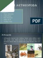 ppt arthropoda kelompok 4.pptx