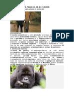 10 ANIMALES EN PELIGRO DE EXTINCIÓN.docx